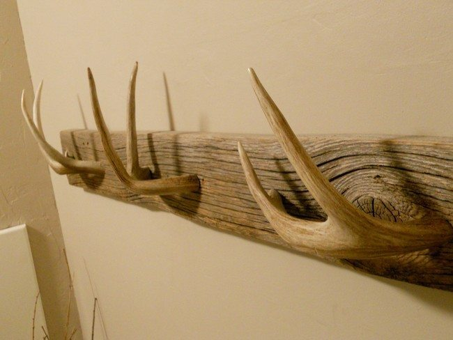 Deer Antler Coat Rack Cosmecol
