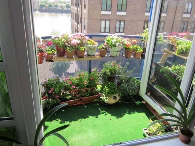 Garden-themed patio