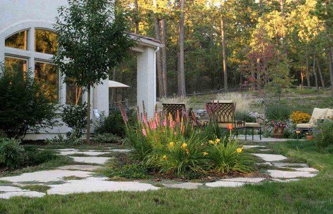Charming backyard