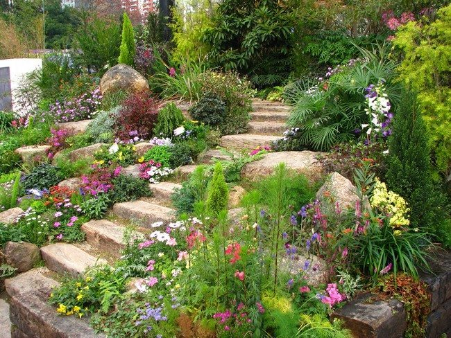 Garden with staircase pathway
