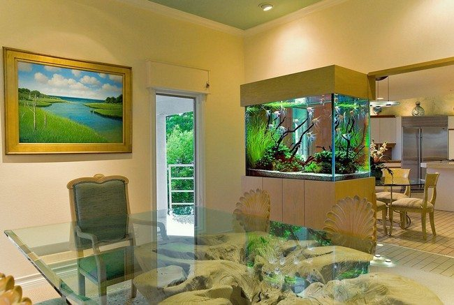 fish tank in the bedroom