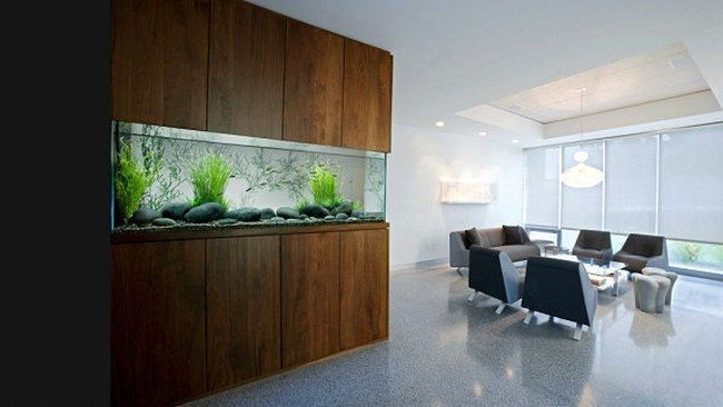 fish tank in the dining room