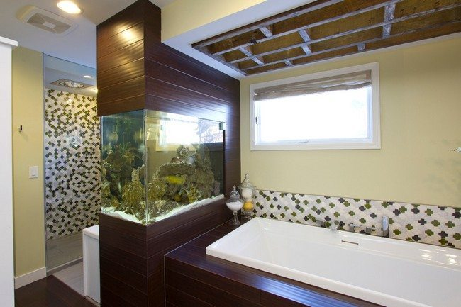 Fishtank blended into wall