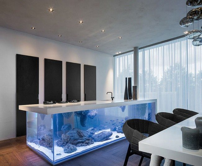 long fish tank in the dining room