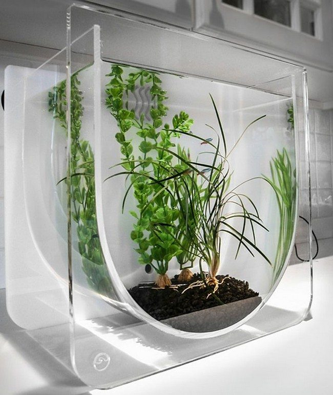 Suspended fish tank