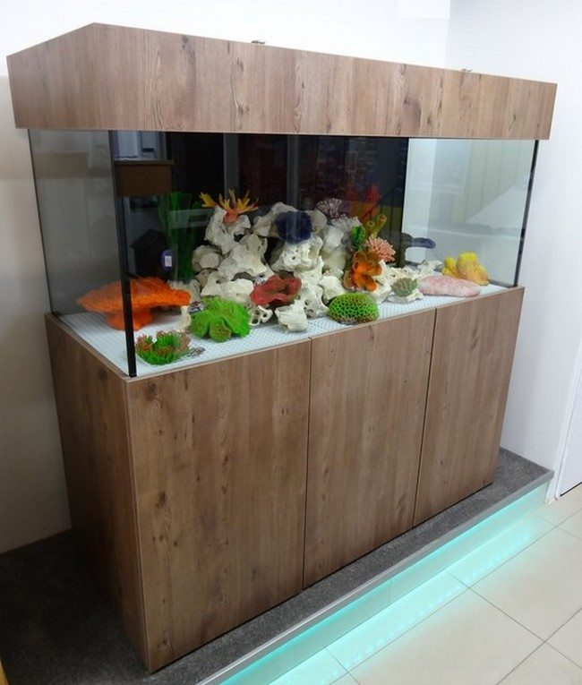 fish tank in the hall