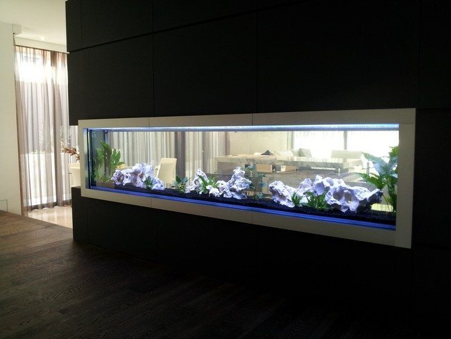 Fish Tank In Modern Dining Room