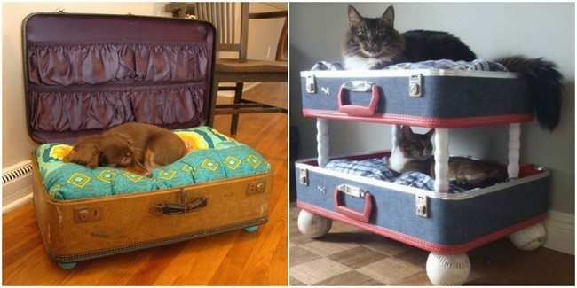 Comfortable pet beds made from repurposed suitcases