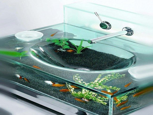 Glass sink incorporated with aquarium