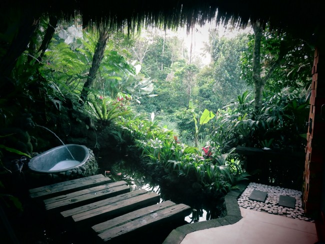 Outdoor tub in tropical rainforest, with water flowing from spring-like feature